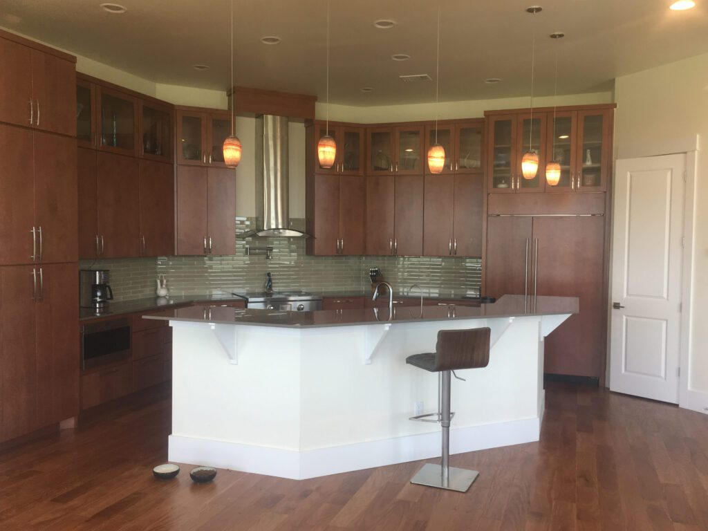 New Kitchen in an Owner Managed Design and Completed Home